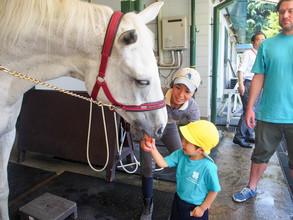 馬の博物館 ~Equine Museum of Japan~
