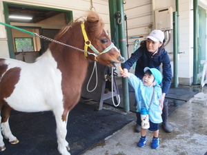 馬の博物館~根岸森林公園