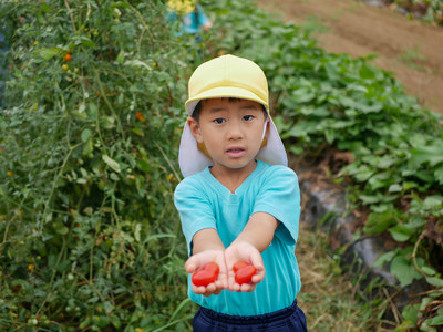 食育 ~野菜の食育体験~