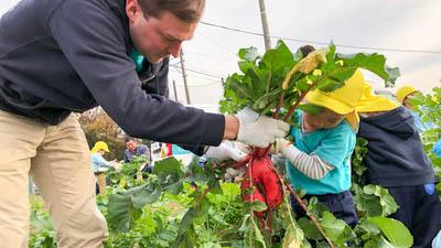 農業体験~野菜収穫~